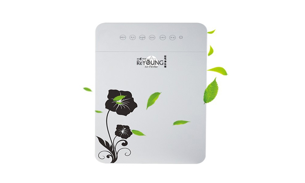Reyoung Air Purifier